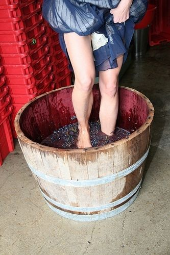 wine stomping party idea