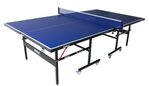 Ping pong table birthday present